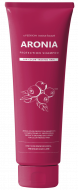 Шампунь для волос АРОНИЯ EVAS Pedison Institute-beaut Aronia Color Protection Shampoo 100мл: фото